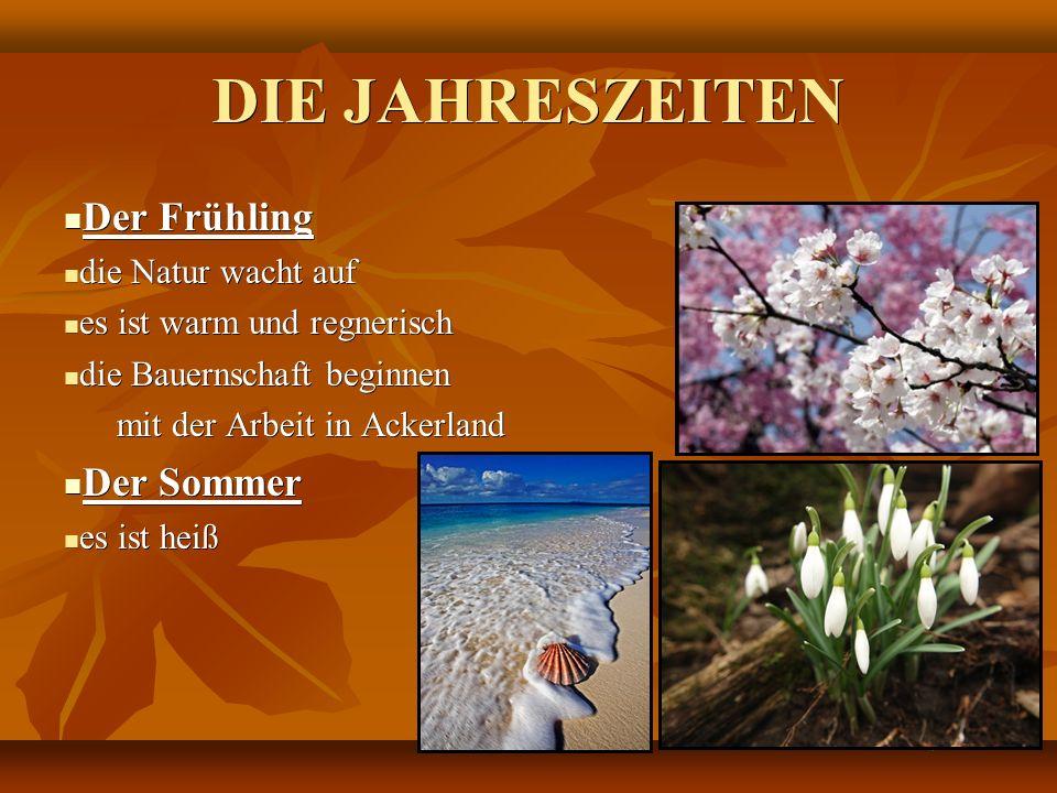 DIE JAHRESZEITEN Der Frühling Der Frühling die Natur wacht auf die Natur wacht auf es ist warm und regnerisch es ist warm und regnerisch die Bauernsch