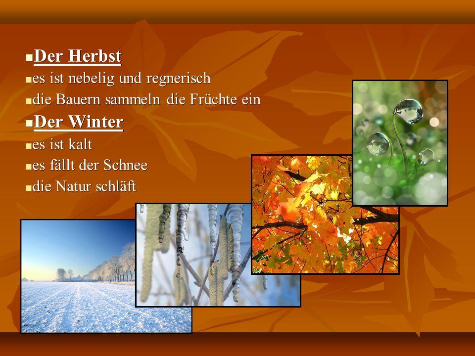 Der Herbst Der Herbst es ist nebelig und regnerisch es ist nebelig und regnerisch die Bauern sammeln die Früchte ein die Bauern sammeln die Früchte ein Der Winter Der Winter es ist kalt es ist kalt es fällt der Schnee es fällt der Schnee die Natur schläft die Natur schläft