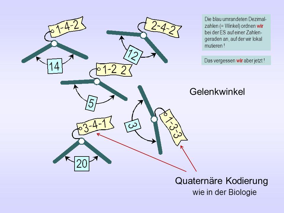 Quaternäre Kodierung wie in der Biologie Gelenkwinkel Die blau umrandeten Dezimal- zahlen (= Winkel) ordnen wir bei der ES auf einer Zahlen- geraden an, auf der wir lokal mutieren .