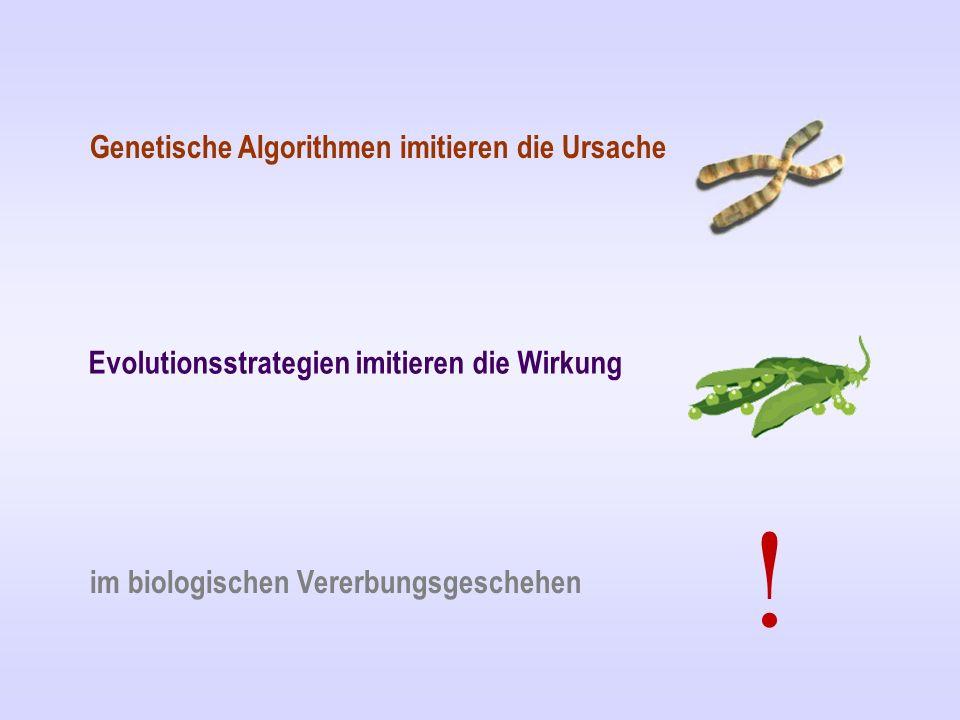 Genetische Algorithmen imitieren die Ursache Evolutionsstrategien imitieren die Wirkung im biologischen Vererbungsgeschehen !
