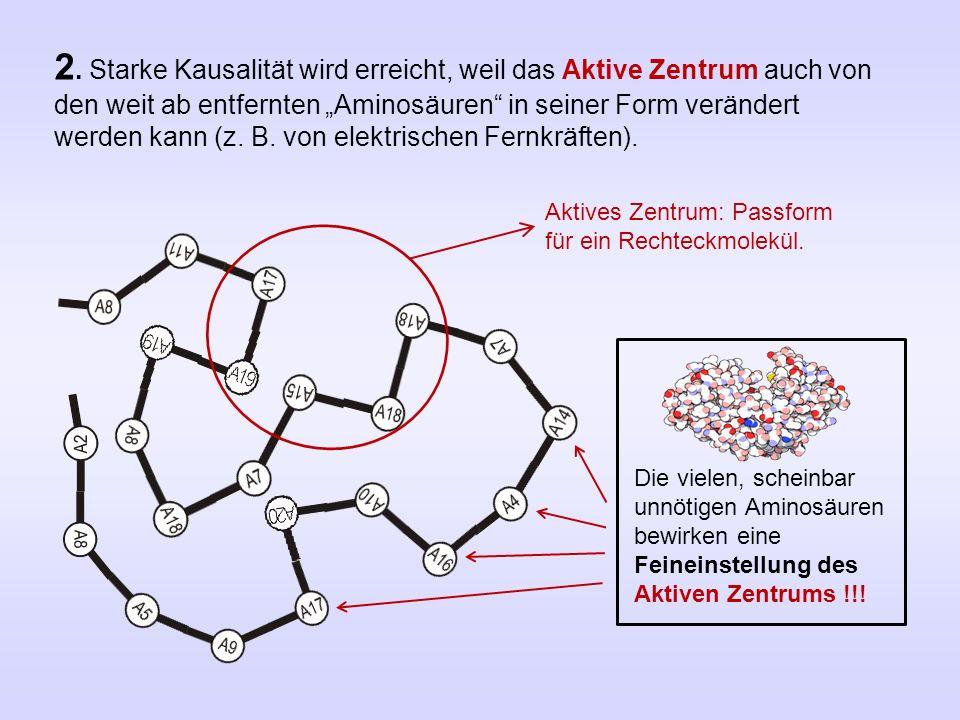 """2. Starke Kausalität wird erreicht, weil das Aktive Zentrum auch von den weit ab entfernten """"Aminosäuren"""" in seiner Form verändert werden kann (z. B."""