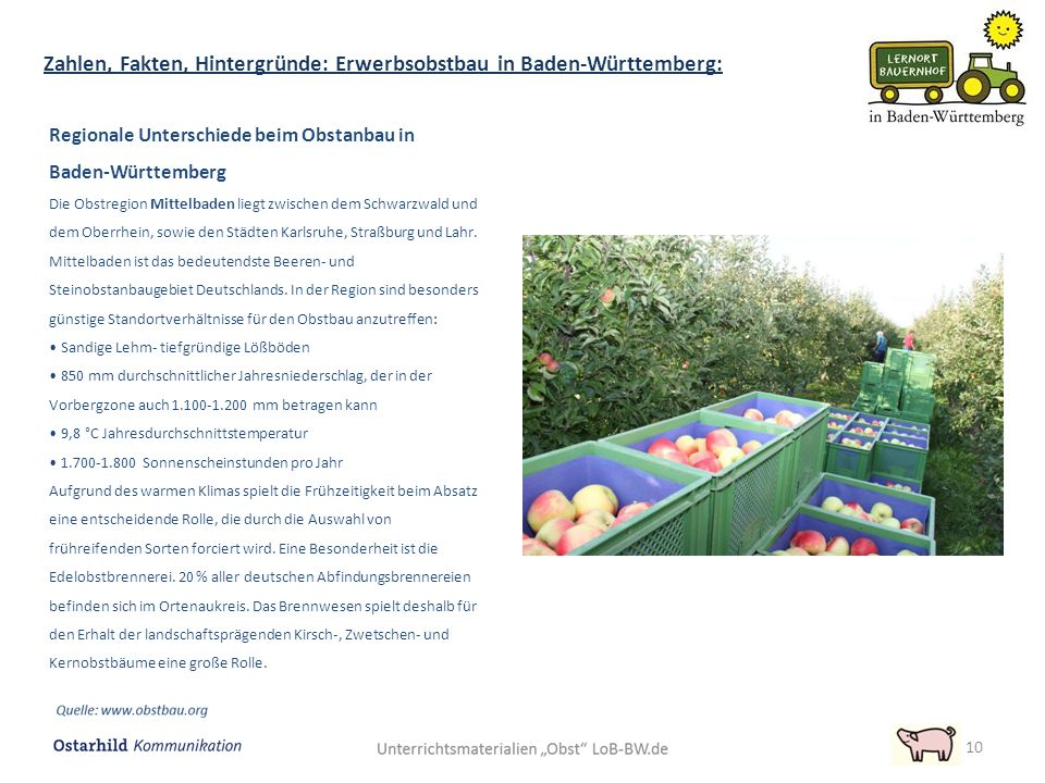 Regionale Unterschiede beim Obstanbau in Baden-Württemberg Die Obstregion Mittelbaden liegt zwischen dem Schwarzwald und dem Oberrhein, sowie den Städ