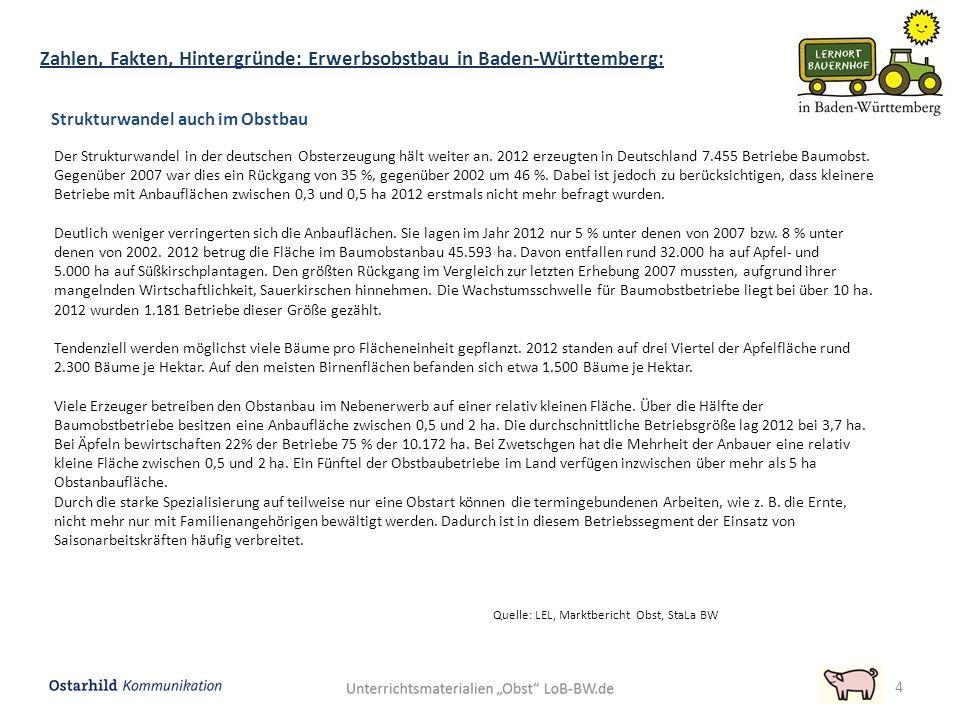 Zahlen, Fakten, Hintergründe: Erwerbsobstbau in Baden-Württemberg: 4 Quelle: LEL, Marktbericht Obst, StaLa BW Strukturwandel auch im Obstbau Der Strukturwandel in der deutschen Obsterzeugung hält weiter an.