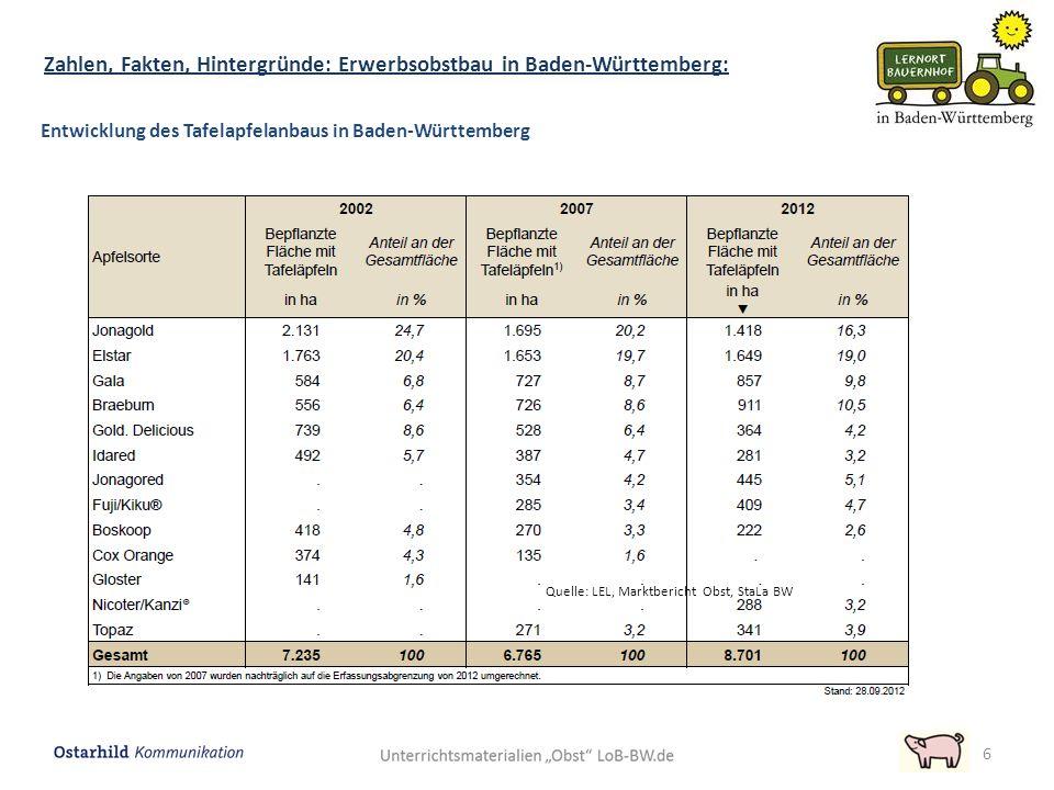 6 Entwicklung des Tafelapfelanbaus in Baden-Württemberg Quelle: LEL, Marktbericht Obst, StaLa BW Zahlen, Fakten, Hintergründe: Erwerbsobstbau in Baden-Württemberg:
