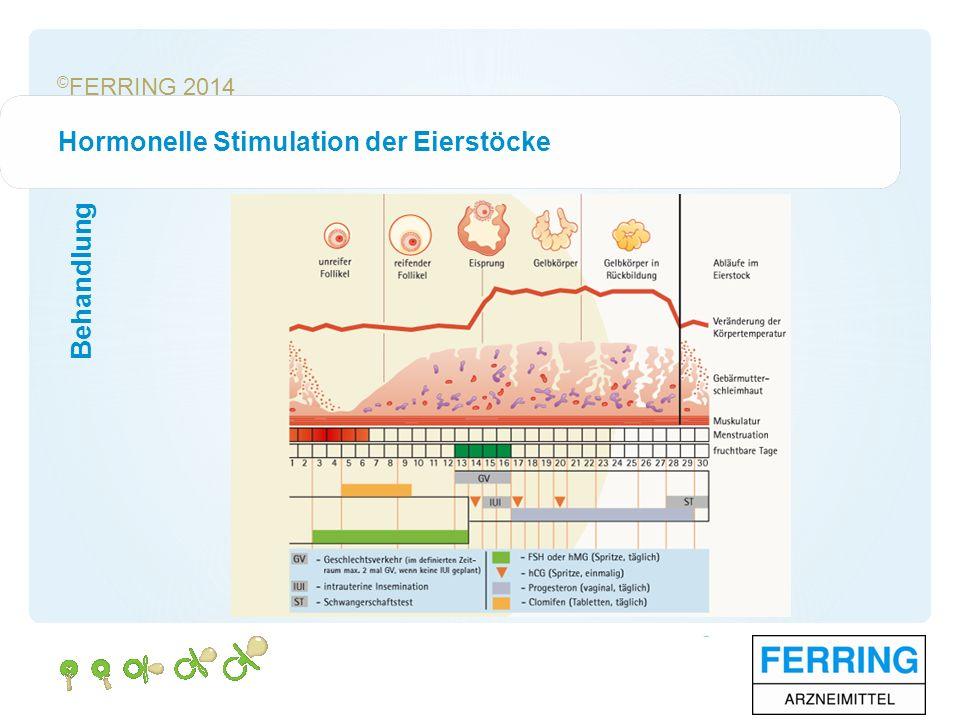© FERRING 2014 Hormonelle Stimulation der Eierstöcke Behandlung