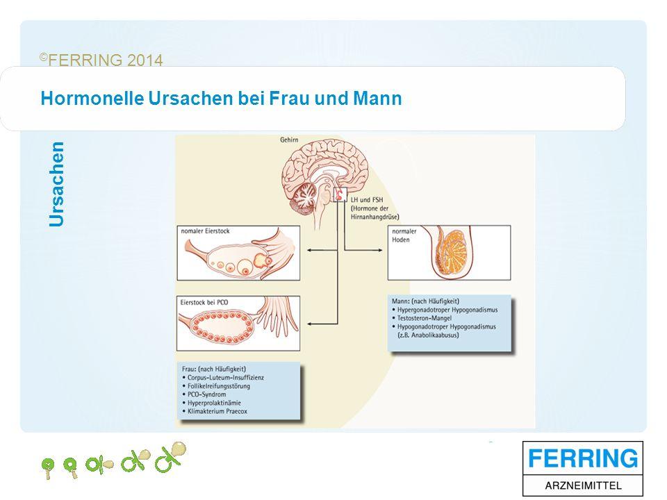 © FERRING 2014 Eingeschränkte Spermienqualität Ursachen Normales Spermiogram 1.Konzentration≥ 15x10 6 /ml Spermien 2.