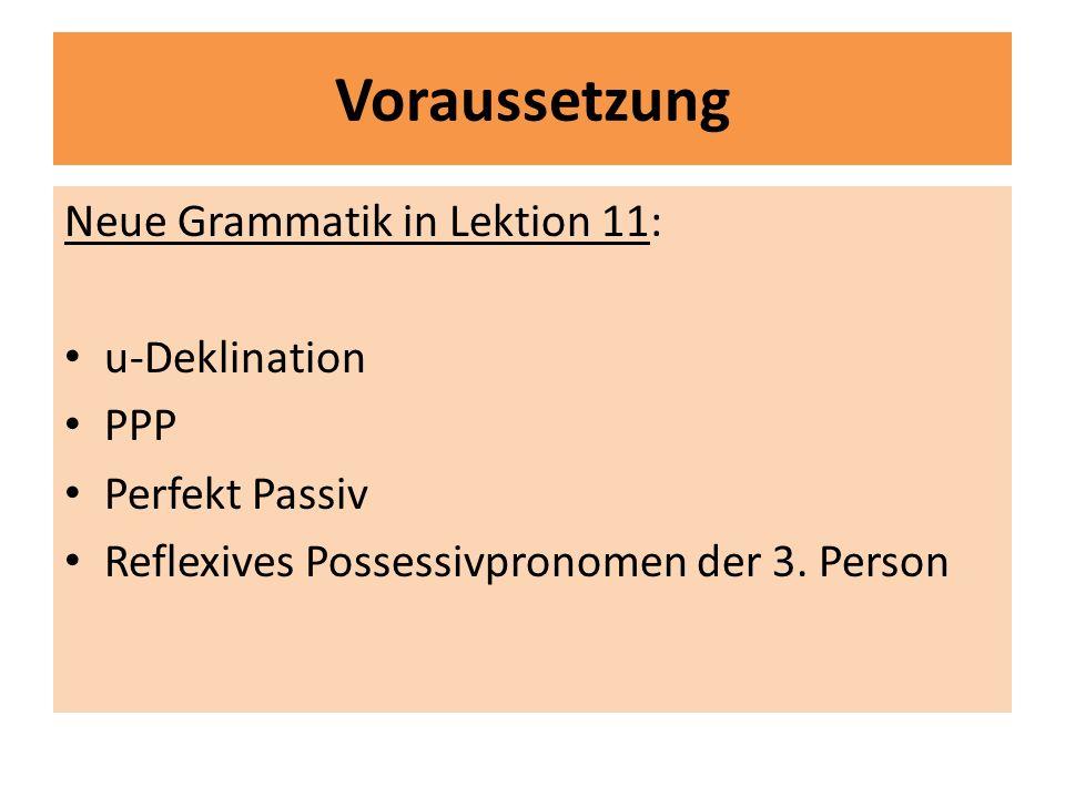 Voraussetzung Neue Grammatik in Lektion 11: u-Deklination PPP Perfekt Passiv Reflexives Possessivpronomen der 3. Person