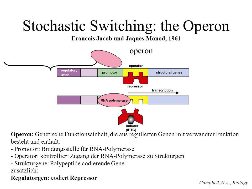 Stochastic Switching: the Operon Francois Jacob und Jaques Monod, 1961 operon Operon: Genetische Funktionseinheit, die aus regulierten Genen mit verwandter Funktion besteht und enthält: - Promotor: Bindungsstelle für RNA-Polymerase - Operator: kontrolliert Zugang der RNA-Polymerase zu Strukturgen - Strukturgene: Polypeptide codierende Gene zusätzlich: Regulatorgen: codiert Repressor Campbell, N.A., Biology