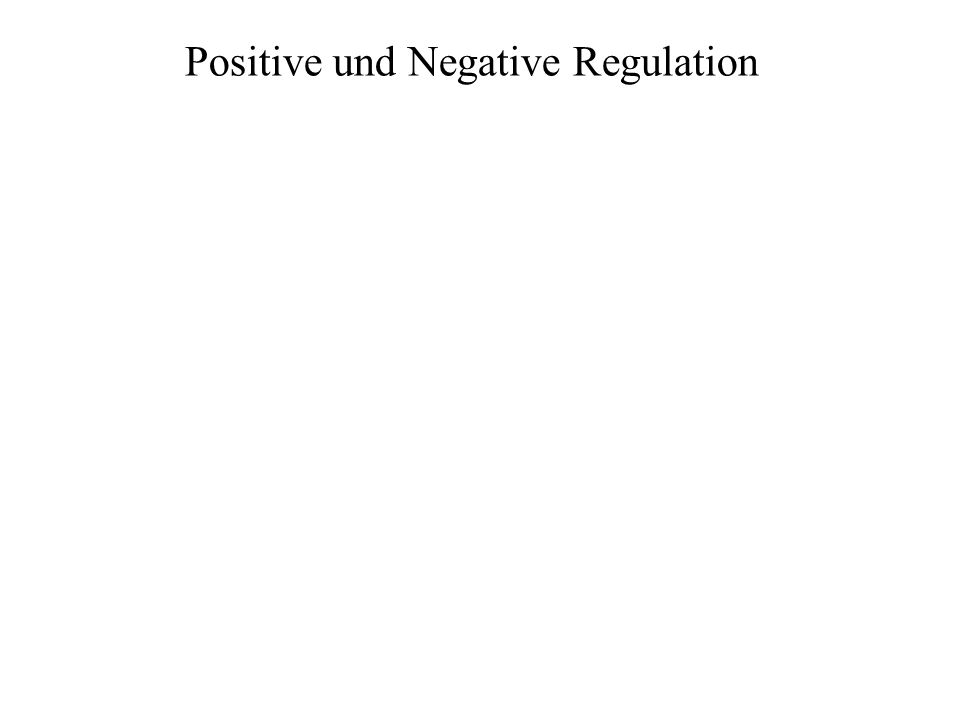 Positive und Negative Regulation