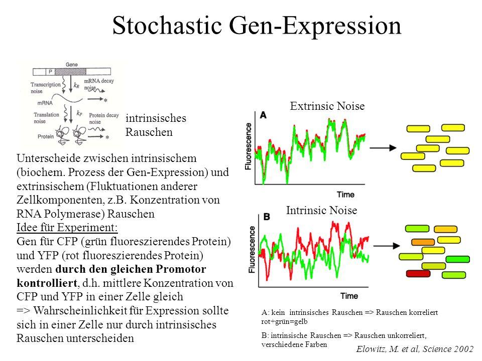 Unterscheide zwischen intrinsischem (biochem.