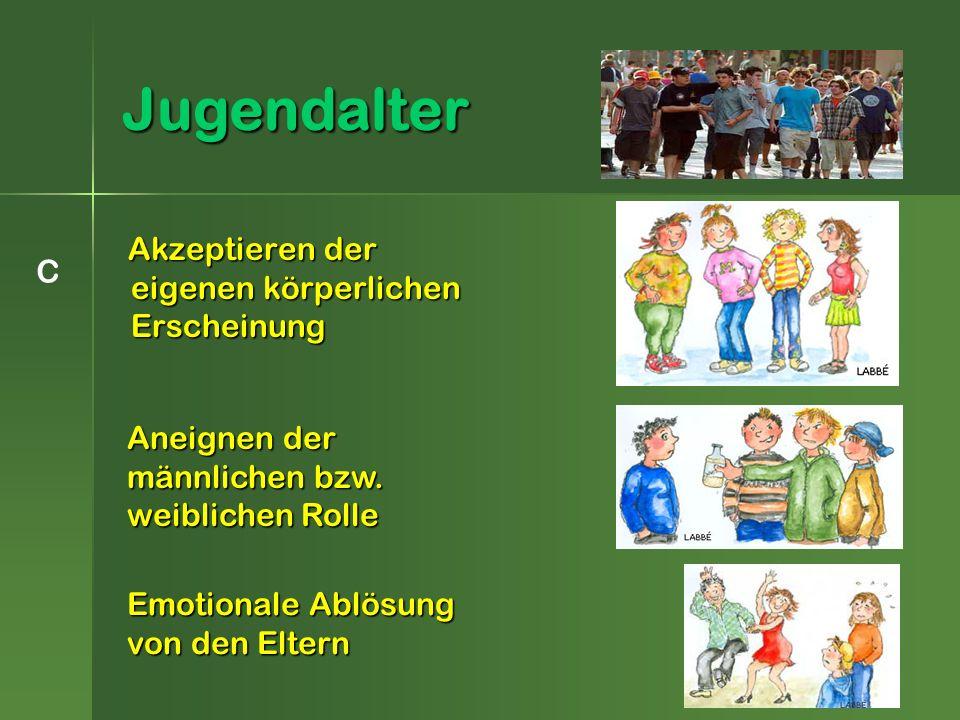 Akzeptieren der eigenen körperlichen Erscheinung Akzeptieren der eigenen körperlichen Erscheinung Jugendalter C Aneignen der männlichen bzw.