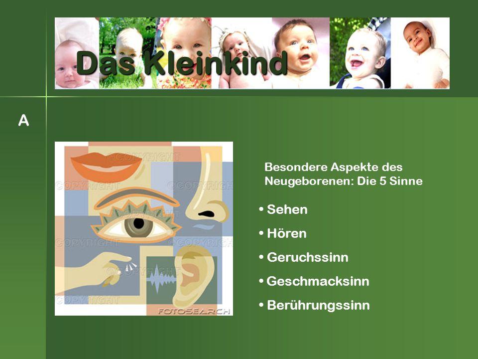 Sehen Hören Geruchssinn Geschmacksinn Berührungssinn Besondere Aspekte des Neugeborenen: Die 5 Sinne A Das Kleinkind