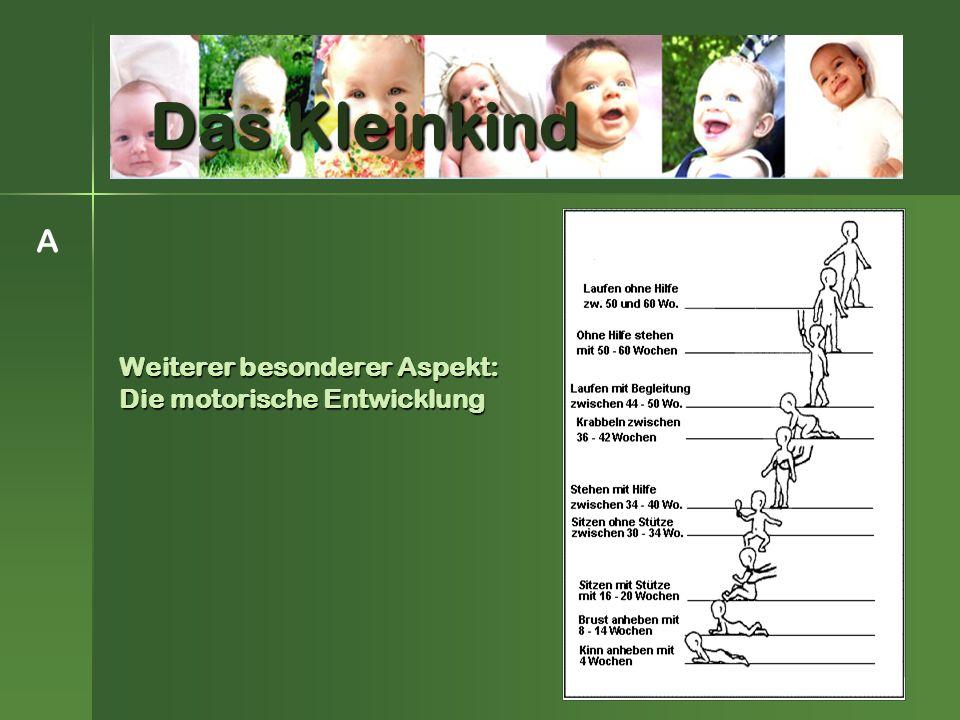 Weiterer besonderer Aspekt: Die motorische Entwicklung A Das Kleinkind
