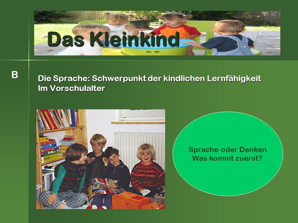 Die Sprache: Schwerpunkt der kindlichen Lernfähigkeit Im Vorschulalter Das Kleinkind B Sprache oder Denken Was kommt zuerst
