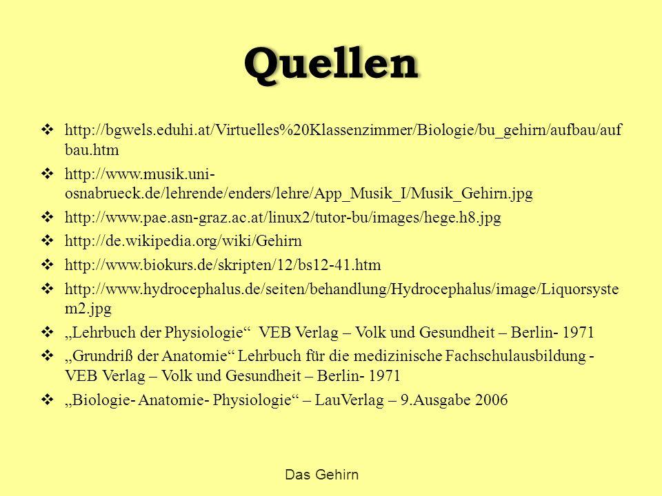 Quellen  http://bgwels.eduhi.at/Virtuelles%20Klassenzimmer/Biologie/bu_gehirn/aufbau/auf bau.htm  http://www.musik.uni- osnabrueck.de/lehrende/ender