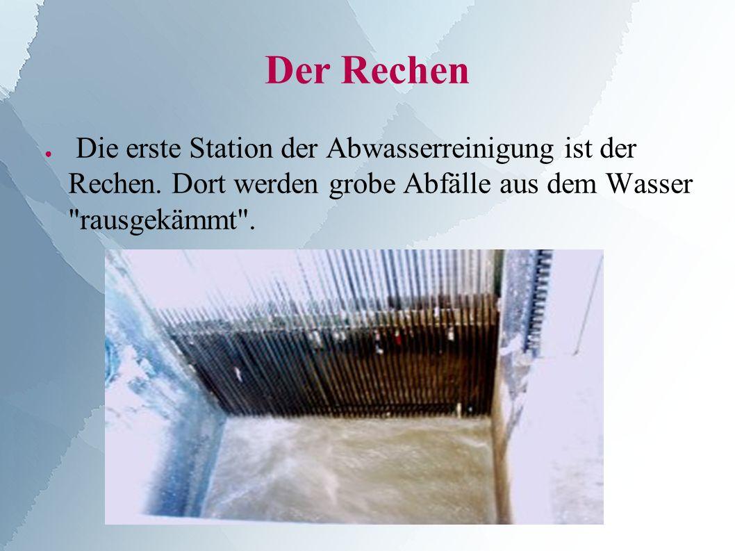Der Rechen ● Die erste Station der Abwasserreinigung ist der Rechen.