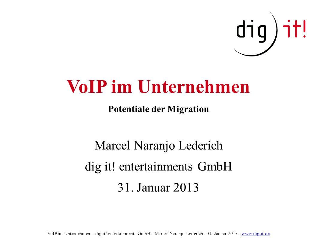 VoIP im Unternehmen Potentiale der Migration Marcel Naranjo Lederich dig it.