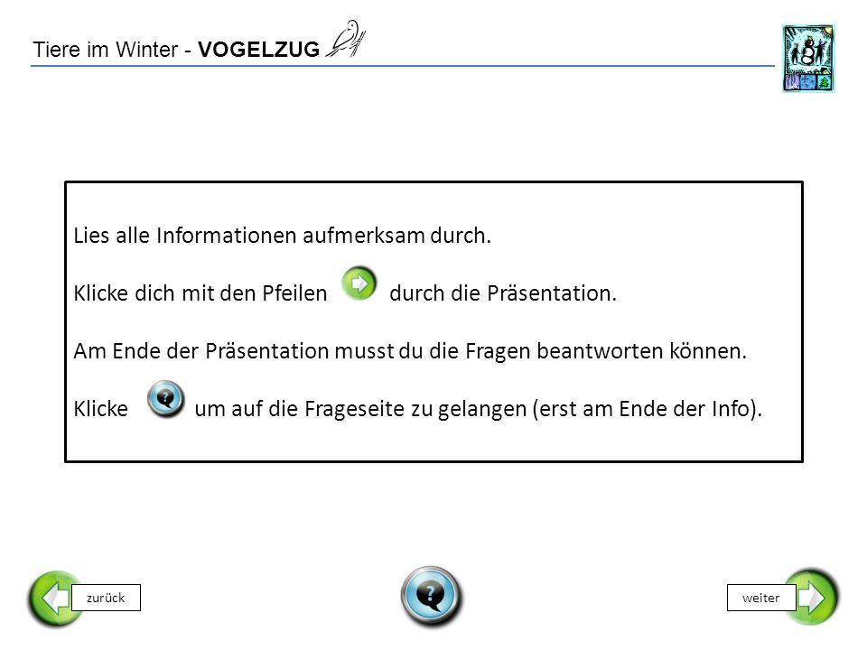 Tiere im Winter - VOGELZUG Lies alle Informationen aufmerksam durch.