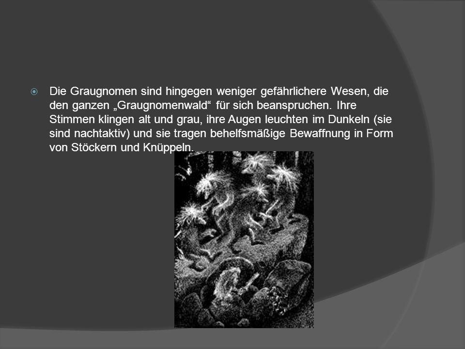 """ Die Graugnomen sind hingegen weniger gefährlichere Wesen, die den ganzen """"Graugnomenwald"""" für sich beanspruchen. Ihre Stimmen klingen alt und grau,"""