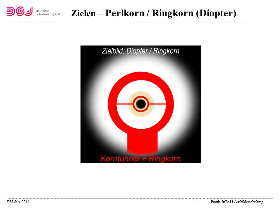 DSJ Jan. 2011 Praxis JuBaLi-Ausbilderschulung Zielen – Perlkorn / Ringkorn (Diopter)