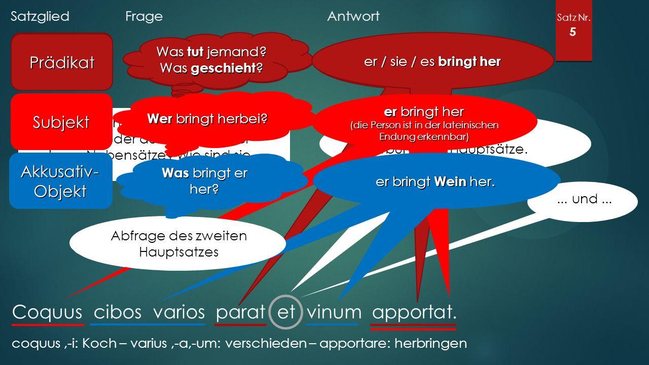 Satzglied Frage Antwort Satz Nr. 5 Coquus cibos varios parat et vinum apportat.