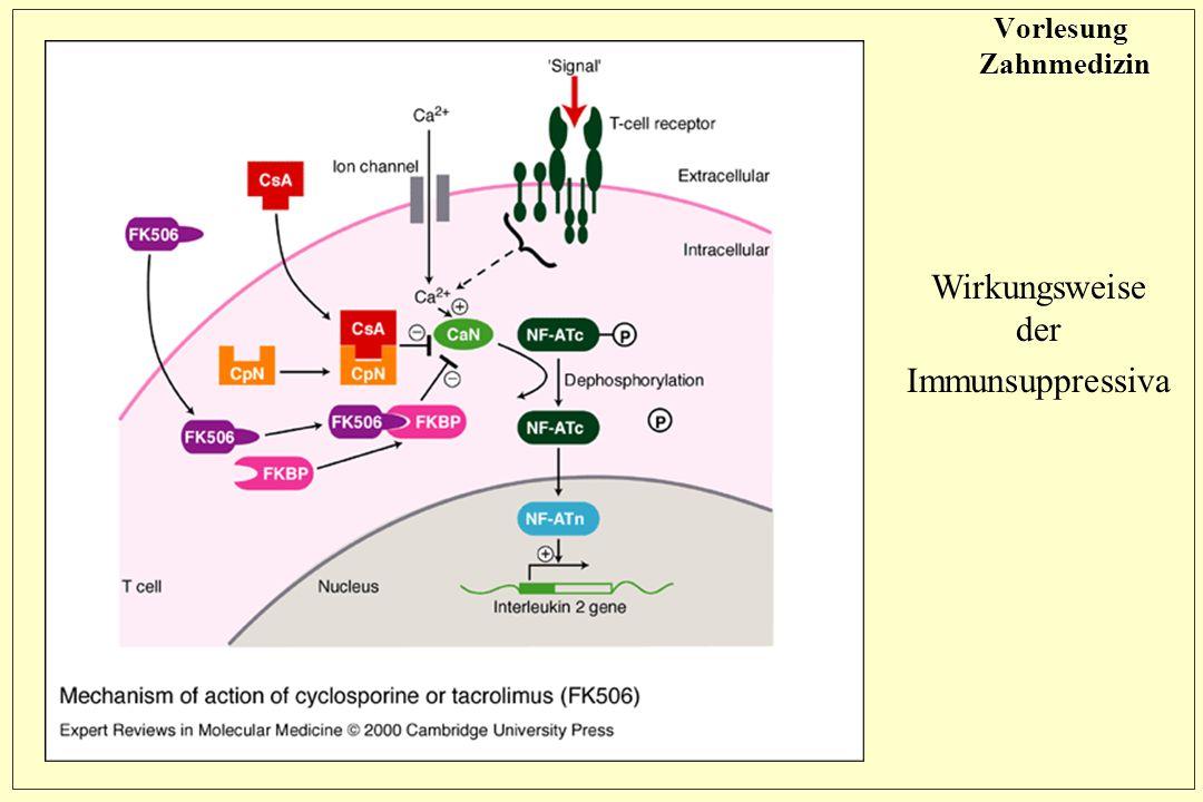 Vorlesung Zahnmedizin Wirkungsweise der Immunsuppressiva
