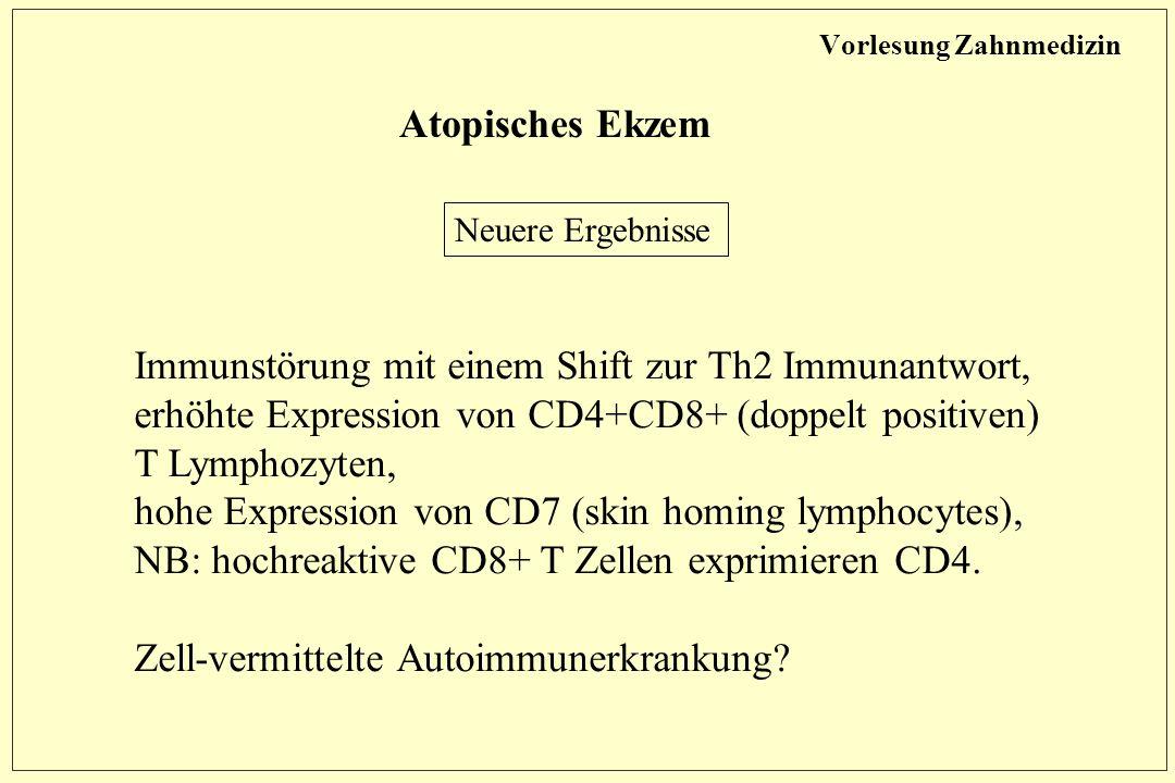 Vorlesung Zahnmedizin Atopisches Ekzem Neuere Ergebnisse Immunstörung mit einem Shift zur Th2 Immunantwort, erhöhte Expression von CD4+CD8+ (doppelt positiven) T Lymphozyten, hohe Expression von CD7 (skin homing lymphocytes), NB: hochreaktive CD8+ T Zellen exprimieren CD4.