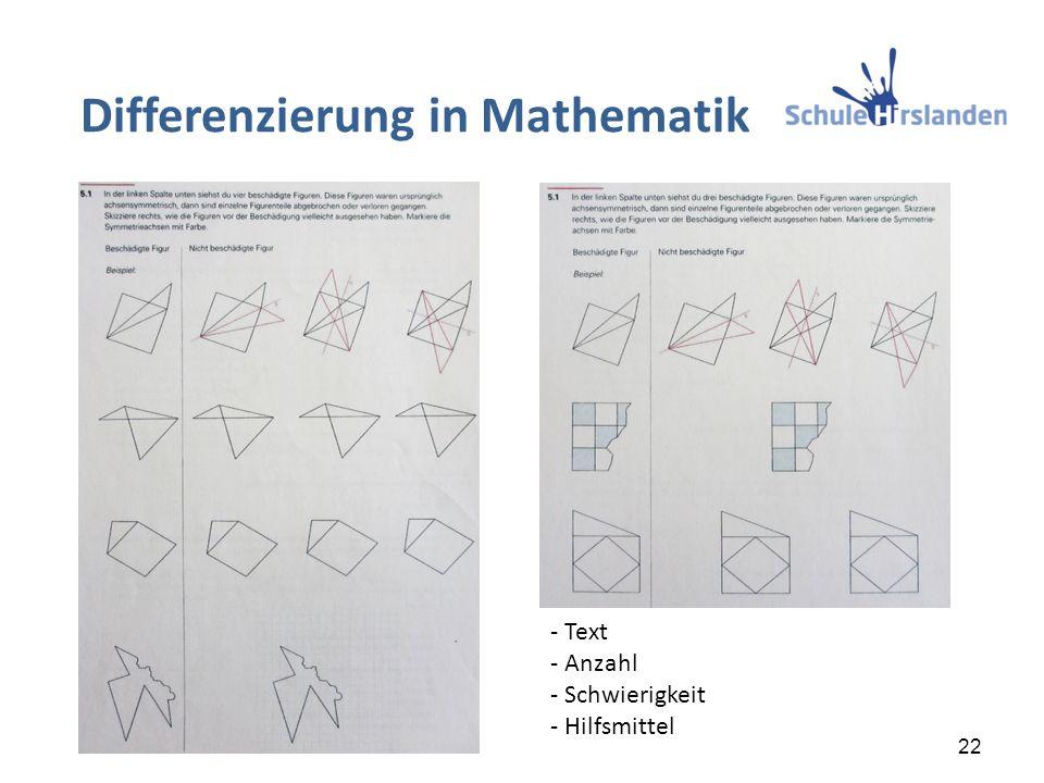 Differenzierung in Mathematik 22 - Text - Anzahl - Schwierigkeit - Hilfsmittel
