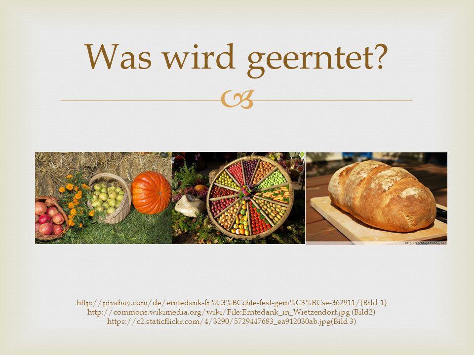  Brot backen Das Fest in der Kita http://upload.wikimedia.org/wikipedi a/commons/7/7c/Pizza_1_bg.jpg
