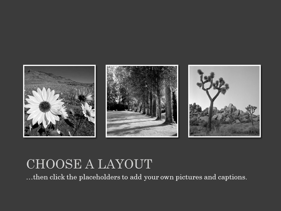 …then click the placeholders to add your own pictures and captions. CHOOSE A LAYOUT
