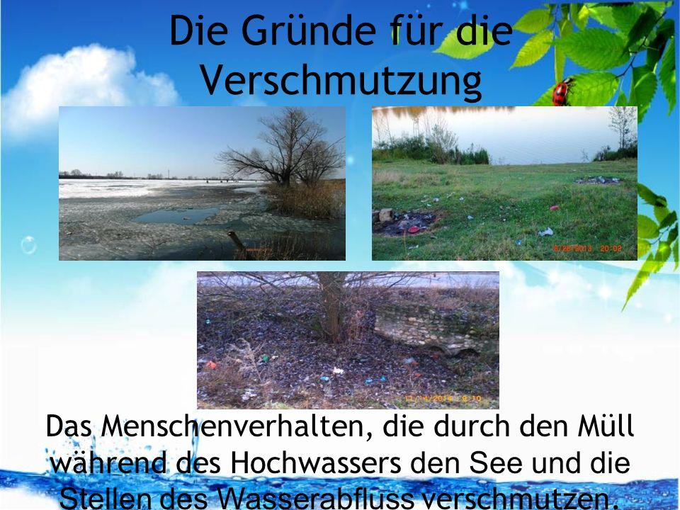 Die Gründe für die Verschmutzung Das Menschenverhalten, die durch den Müll während des Hochwassers den See und die Stellen des Wasserabfluss verschmutzen.