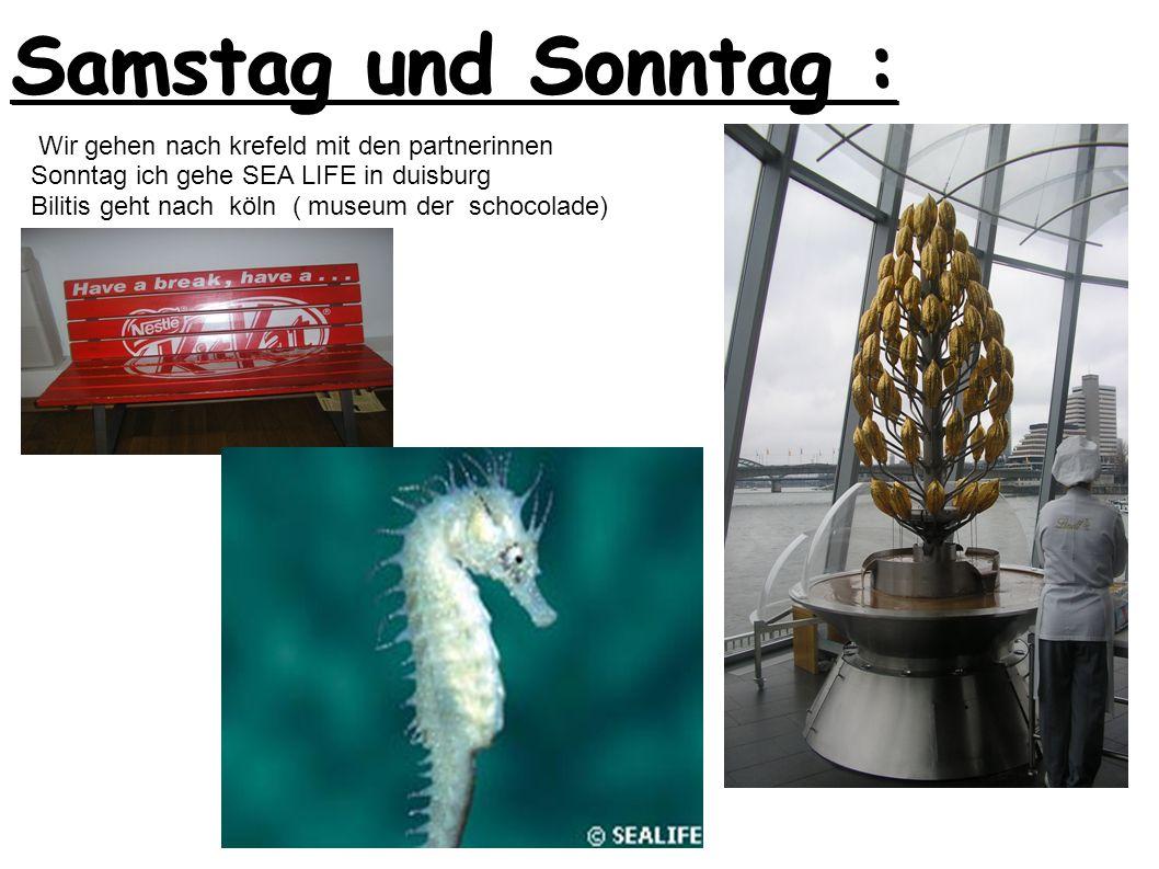 Samstag und Sonntag : Wir gehen nach krefeld mit den partnerinnen Sonntag ich gehe SEA LIFE in duisburg Bilitis geht nach köln ( museum der schocolade)