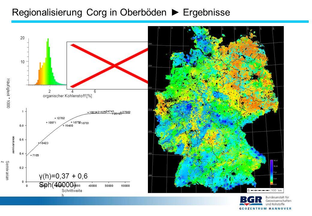 Regionalisierung Corg in Oberböden ► Ergebnisse 2 4 6 10 20 Häufigkeit * 1000 organischer Kohlenstoff [%] Schrittweite h Semivarian z γ(h)=0,37 + 0,6 Sph(40000) Regionalisierung mit IDW