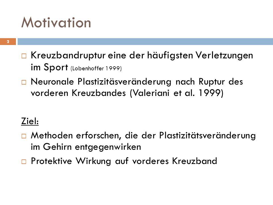Motivation 2  Kreuzbandruptur eine der häufigsten Verletzungen im Sport (Lobenhoffer 1999)  Neuronale Plastizitäsveränderung nach Ruptur des vorderen Kreuzbandes (Valeriani et al.