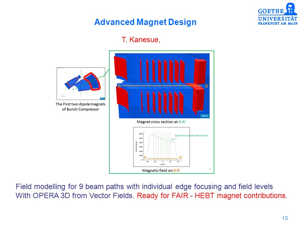 13 Advanced Magnet Design T.