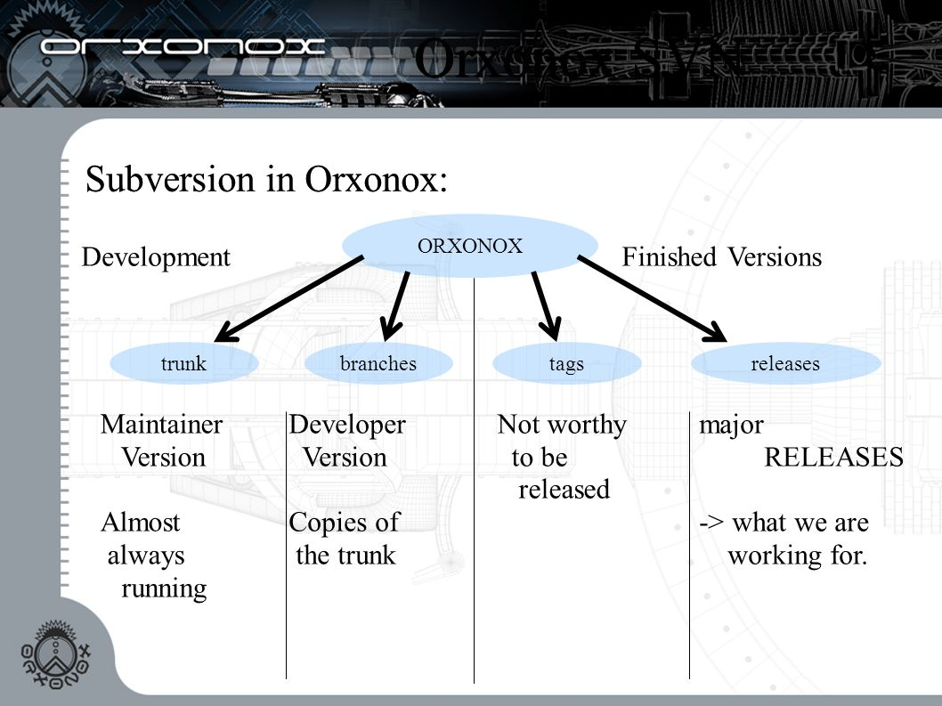 Orxonox SVN Subversion in Orxonox: ORXONOX DevelopmentFinished Versions trunk Maintainer Version Almost always running branches Developer Version Copies of the trunk tags Not worthy to be released releases major RELEASES -> what we are working for.
