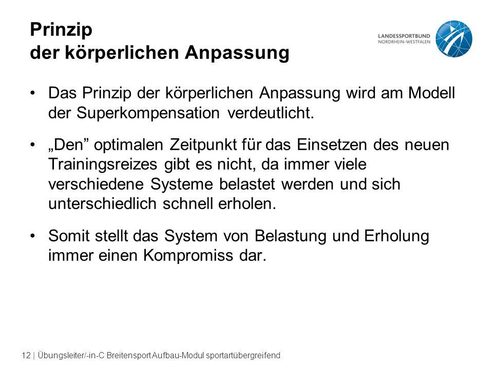 12 | Übungsleiter/-in-C Breitensport Aufbau-Modul sportartübergreifend Prinzip der körperlichen Anpassung Das Prinzip der körperlichen Anpassung wird am Modell der Superkompensation verdeutlicht.