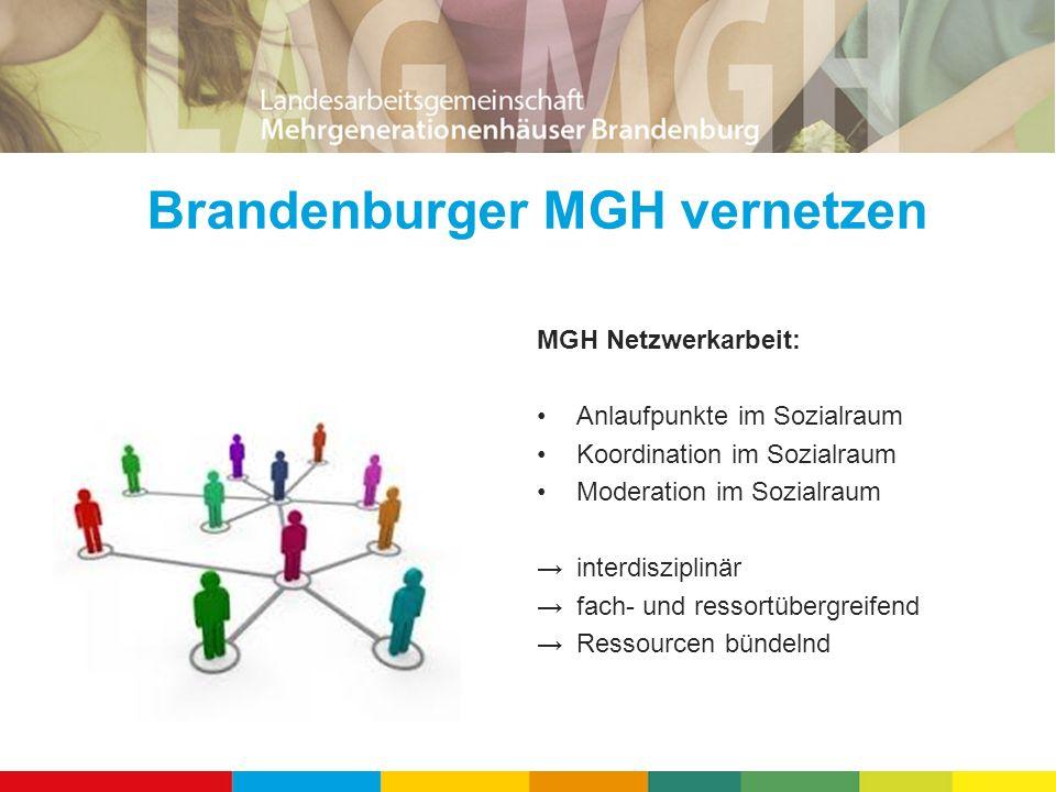 Brandenburger MGH vernetzen MGH Netzwerkarbeit: Anlaufpunkte im Sozialraum Koordination im Sozialraum Moderation im Sozialraum → interdisziplinär → fa