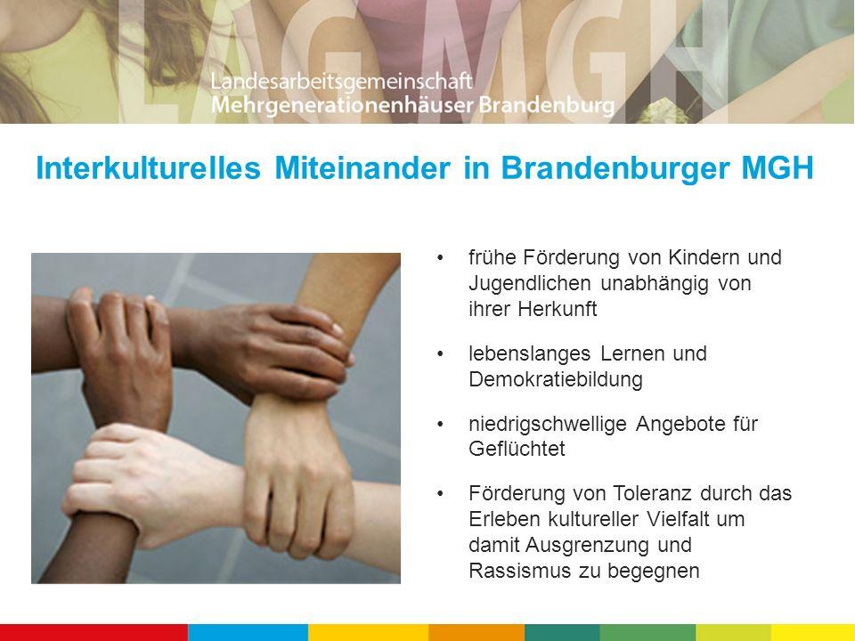 Bürgerbeteiligung durch Brandenburger MGH Plattform für gesellschaftliches und ehrenamtliches Engagement Förderung und Unterstützung von Eigeninitiative Sozialraumgestaltung durch Bürgeraktivitäten Beschäftigungsförderung durch die Aktivierung persönlicher Potenziale
