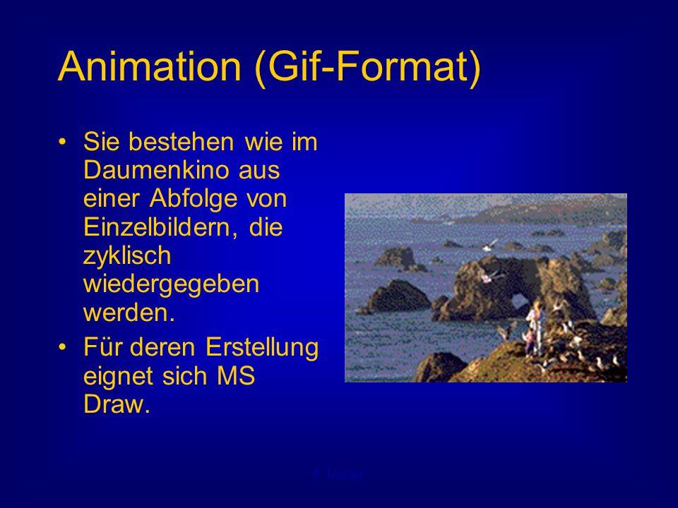 F. Müller Animation (Gif-Format) Sie bestehen wie im Daumenkino aus einer Abfolge von Einzelbildern, die zyklisch wiedergegeben werden. Für deren Erst