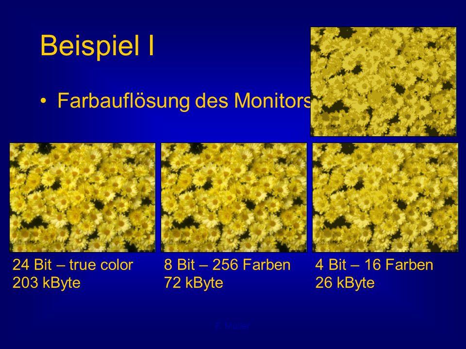 F. Müller Beispiel I Farbauflösung des Monitors 24 Bit – true color 203 kByte 8 Bit – 256 Farben 72 kByte 4 Bit – 16 Farben 26 kByte