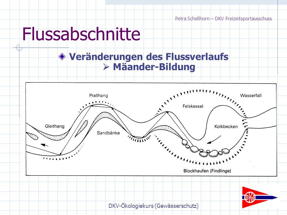 DKV-Ökologiekurs (Gewässerschutz) Flussabschnitte Veränderungen des Flussverlaufs  Mäander-Bildung Petra Schellhorn – DKV Freizeitsportausschuss