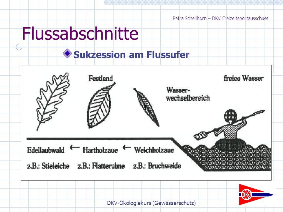 DKV-Ökologiekurs (Gewässerschutz) Flussabschnitte Sukzession am Flussufer Petra Schellhorn – DKV Freizeitsportausschuss