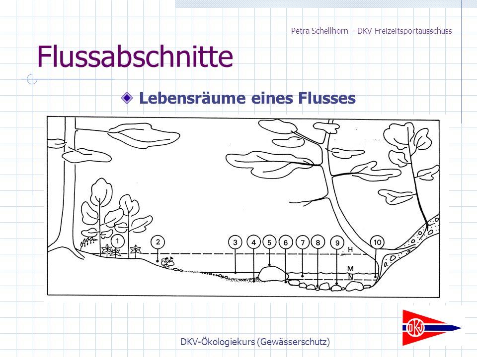 DKV-Ökologiekurs (Gewässerschutz) Flussabschnitte Lebensräume eines Flusses Petra Schellhorn – DKV Freizeitsportausschuss