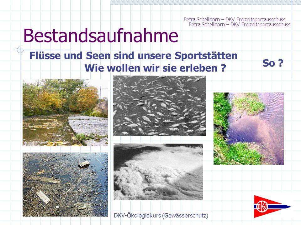 DKV-Ökologiekurs (Gewässerschutz) Bestandsaufnahme Wie wollen wir sie erleben .
