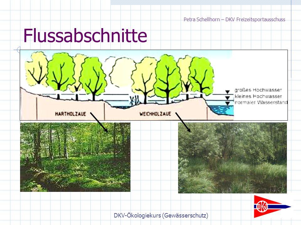 DKV-Ökologiekurs (Gewässerschutz) Flussabschnitte Petra Schellhorn – DKV Freizeitsportausschuss