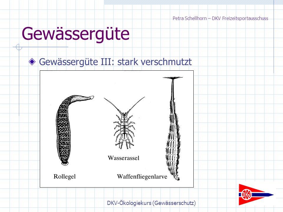 DKV-Ökologiekurs (Gewässerschutz) Gewässergüte Gewässergüte III: stark verschmutzt Petra Schellhorn – DKV Freizeitsportausschuss