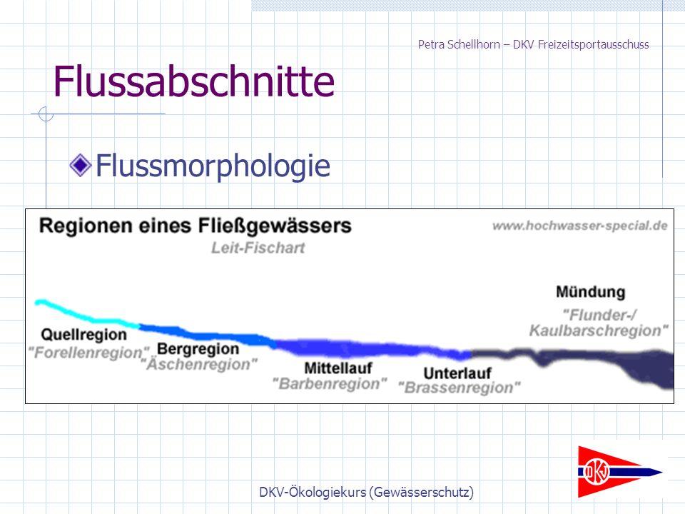 DKV-Ökologiekurs (Gewässerschutz) Flussabschnitte Flussmorphologie Petra Schellhorn – DKV Freizeitsportausschuss