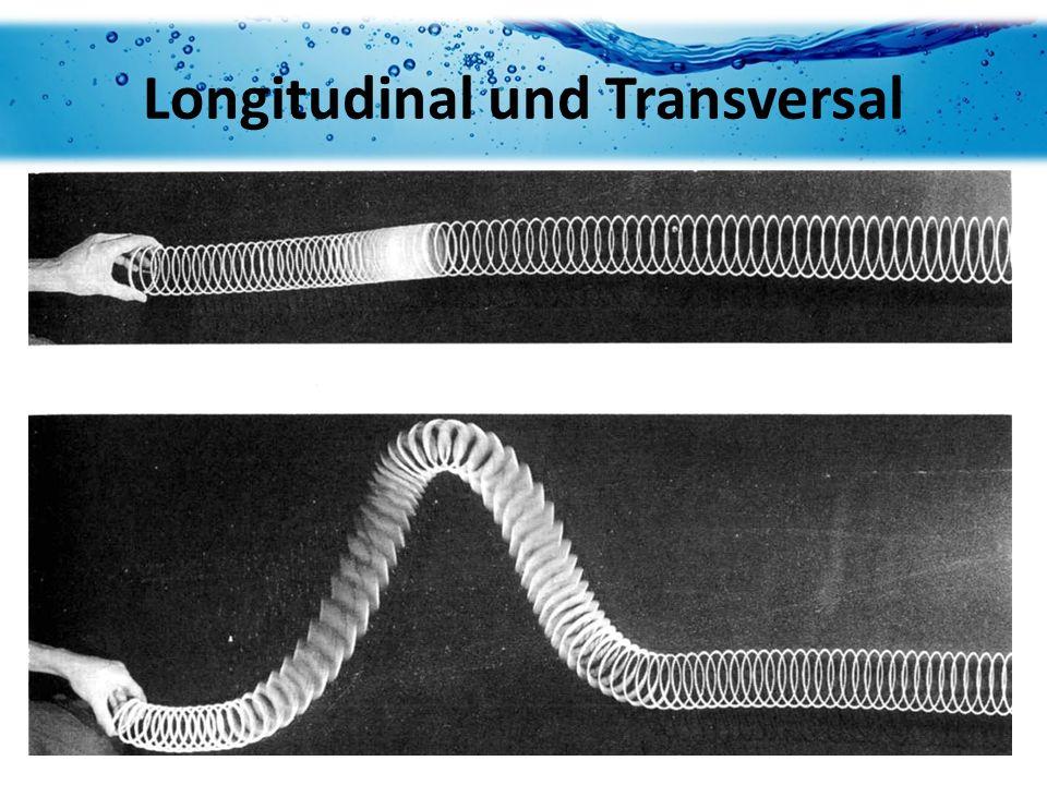Longitudinal und Transversal
