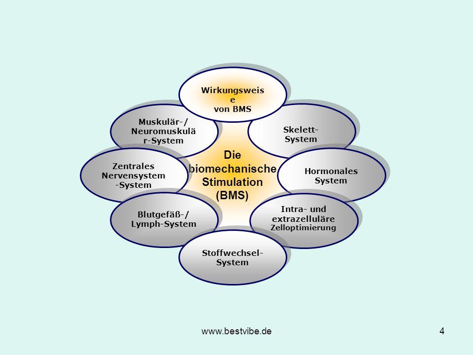 www.bestvibe.de4 Die biomechanische Stimulation (BMS) Die biomechanische Stimulation (BMS) Muskulär-/ Neuromuskulä r-System Muskulär-/ Neuromuskulä r-System Zentrales Nervensystem -System Skelett- System Hormonales System Blutgefäß-/ Lymph-System Blutgefäß-/ Lymph-System Intra- und extrazelluläre Zelloptimierung Intra- und extrazelluläre Zelloptimierung Stoffwechsel- System Wirkungsweis e von BMS Wirkungsweis e von BMS